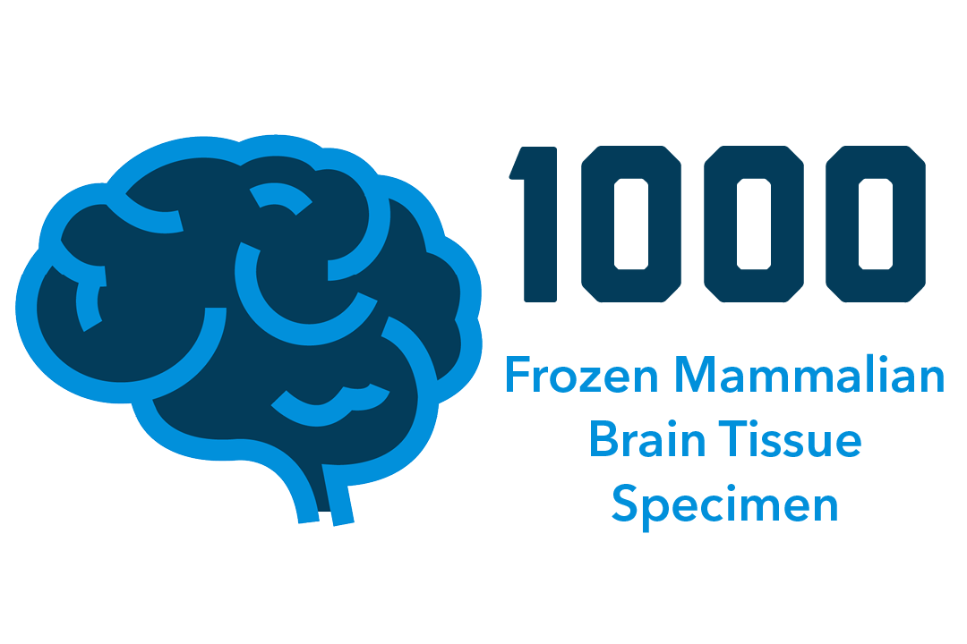 1000 frozen mammalian brain tissue specimens