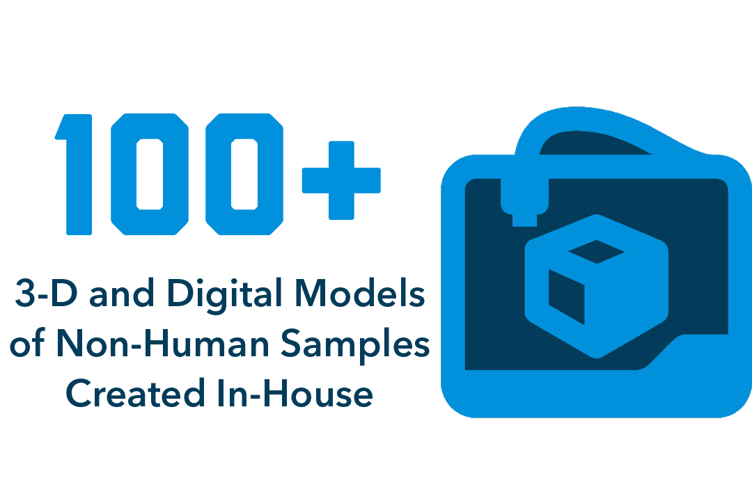 100+ 3-d and digital models of non-human samples created in-house
