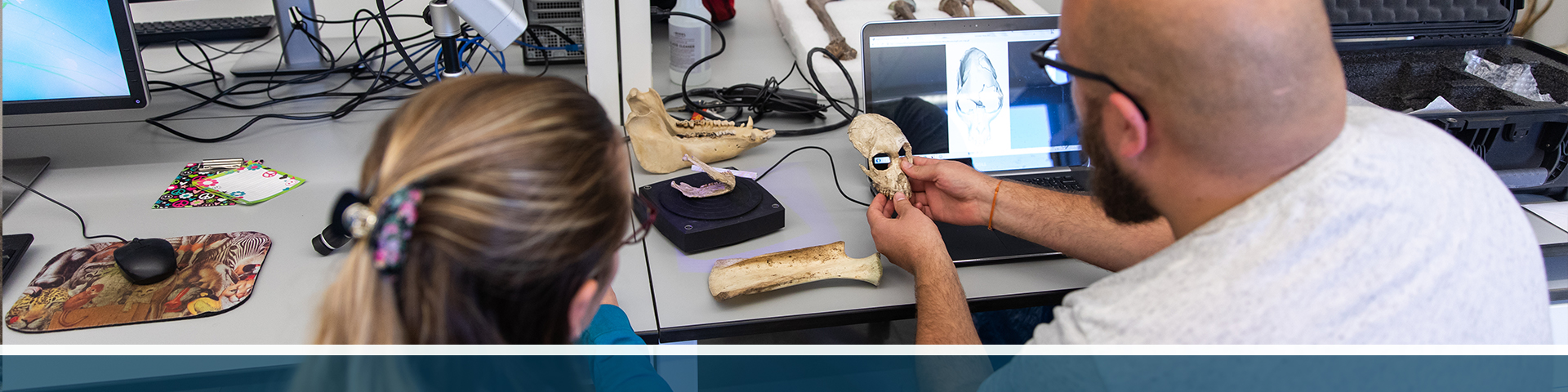 2 graduate students working with bone specimens in an anthropology lab