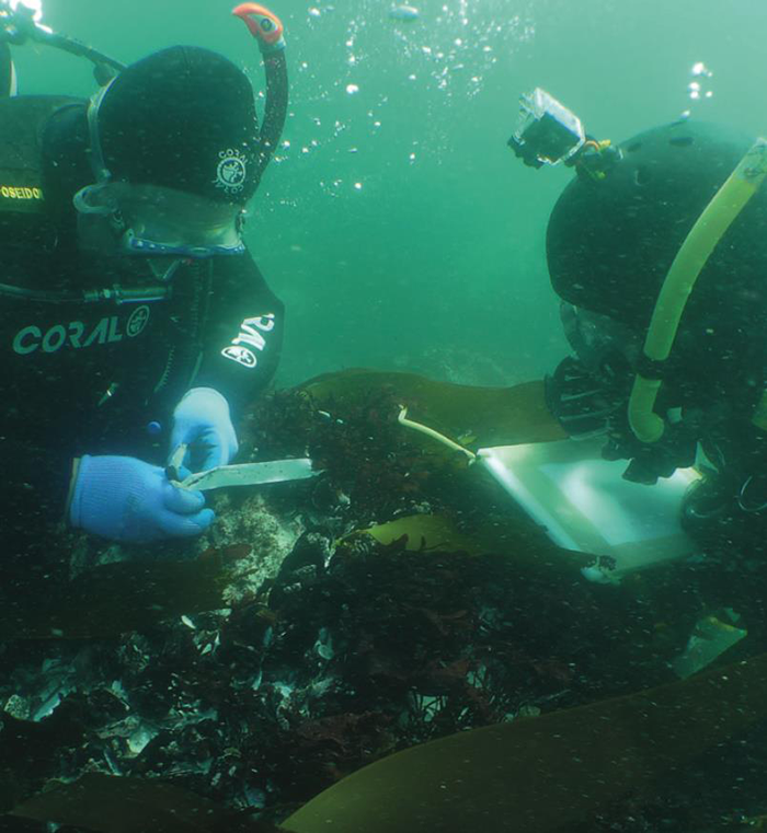 Maritime archaeologists record findings at the site of the São José wreckage
